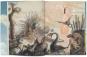 Paläo-Kunst. Darstellungen der Urgeschichte 1830-1980. Bild 5