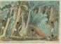 Reise nach Brasilien in den Jahren 1815 bis 1817. Bild 5