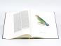 Christian Ludwig Brehm. Monographie der Papageien. Bild 6