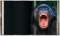 Frans Lanting. Auge in Auge. Bild 6