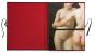 Le Louvre Nu. Paintings. Bd. 1. Bild 6