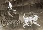 Manege frei! Die Kulturgeschichte des Zirkus. Bild 6