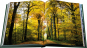 The Best of Jürgen Becker. Garten-Fotografien. Garden Pictures. Bild 6
