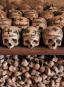 Im Reich der Toten. Eine Kulturgeschichte der Beinhäuser und Ossuarien. Bild 7
