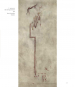 Kunst der Vorzeit. Felsbilder der Frobenius-Expeditionen. Bild 7